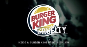 Burger-King-Cruelty