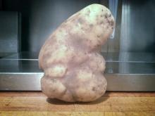 potato_elvis_conanobrien_jayleno