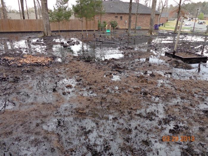 Exxon Oil Spill Cover Photo