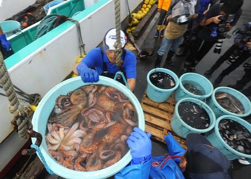 Fisherman transporting seafood from the Fukushima coast to Japanese markets.