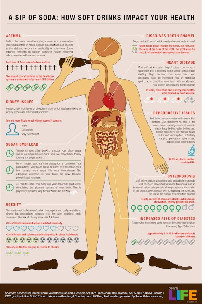 soda-in-the-body